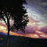 Zonsondergang en silhouet in landelijk Royalty-vrije Stock Afbeeldingen