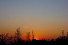 Zonsondergang en silhouetten van bomen Stock Afbeeldingen