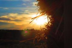 Zonsondergang en Stro Stock Afbeelding
