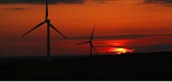 Zonsondergang en windmolens Stock Foto's