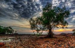Zonsondergang en zonsopgangmening Stock Foto's