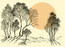 Zonsondergang in het bos royalty-vrije illustratie