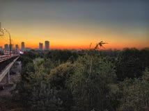 Zonsondergang in het park royalty-vrije stock fotografie