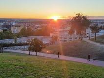 Zonsondergang in het park stock foto