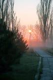 Zonsondergang in het park Royalty-vrije Stock Foto's