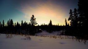 Zonsondergang in het sneeuw bos plaatsen stock video