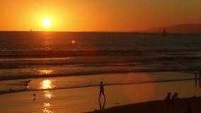 Zonsondergang in het Strand van Venetië stock videobeelden