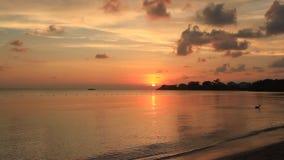 Zonsondergang in Jamaïca Caraïbische overzees stock video