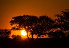 Zonsondergang Kgalagai Stock Afbeelding