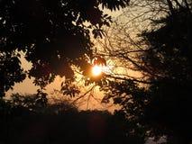 Zonsondergang in Lowveld stock foto
