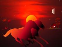 Zonsondergang & Maan, Paarden Royalty-vrije Stock Foto