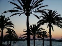 Zonsondergang - Mallorca Stock Foto's