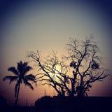 Zonsondergang Maputo Mozambique stock afbeelding