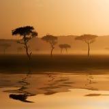 Zonsondergang in Massai Mara Royalty-vrije Stock Afbeeldingen