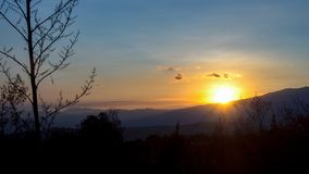 Zonsondergang met een agavebloem royalty-vrije stock afbeelding