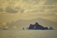 Zonsondergang met ijsbergen royalty-vrije stock foto's