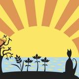 Zonsondergang met kat Stock Foto