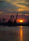 Zonsondergang met Kranen Royalty-vrije Stock Afbeelding