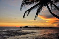 Zonsondergang met Overzees en Palmtree, Sri Lanka Stock Afbeeldingen