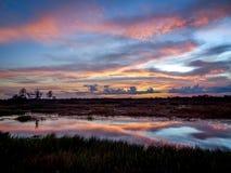 zonsondergang met roze wolken in de moerasrivier stock fotografie