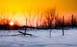 Zonsondergang met sneeuw Stock Foto