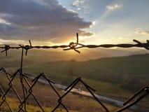Zonsondergang met weerhaken Royalty-vrije Stock Foto's