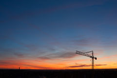Zonsondergang met witte ooievaars Stock Afbeelding