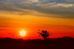 Zonsondergang mooi kleurrijk landschap in de blauwe tijd van de de aardschemering van de hemelavond en silhouetboom Royalty-vrije Stock Afbeelding
