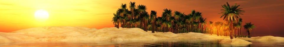 Zonsondergang in oase stock afbeelding