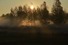 Zonsondergang oktober Stock Afbeelding