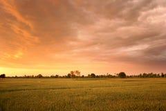 Zonsondergang onder fileds Stock Afbeeldingen