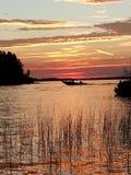zonsondergang onder het riet stock afbeeldingen