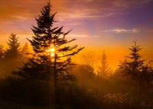 Zonsondergang op Blauw Ridge Parkway stock fotografie