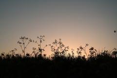Zonsondergang op de dijk Stock Afbeeldingen