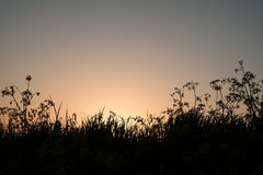 Zonsondergang op de dijk in Vianen Stock Foto's