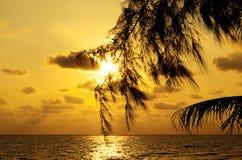 Zonsondergang op de oceaan Stock Foto's