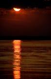 Zonsondergang op de Rivier Chobe Stock Foto's