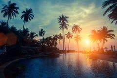 Zonsondergang op de tropische kust Royalty-vrije Stock Afbeeldingen