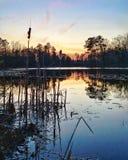 Zonsondergang op de vijver Stock Afbeeldingen