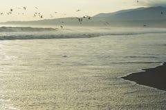 Zonsondergang op de Vreedzame kust van Peru Royalty-vrije Stock Foto's