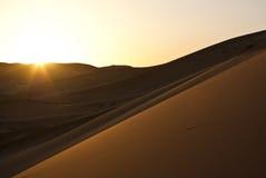Zonsondergang op de woestijnwoestijn Royalty-vrije Stock Fotografie
