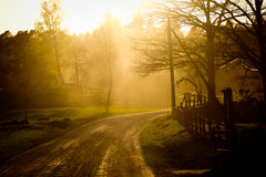 Zonsondergang op een landbouwbedrijf Stock Afbeeldingen