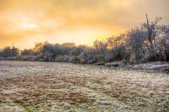 Zonsondergang op een mistige de winterdag met berijpte bomen Royalty-vrije Stock Foto's