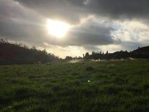Zonsondergang op gebied Stock Afbeelding