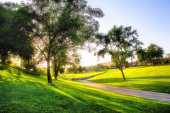 Zonsondergang op golfcursus Stock Foto