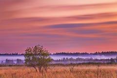 Zonsondergang op het gebied Royalty-vrije Stock Afbeeldingen