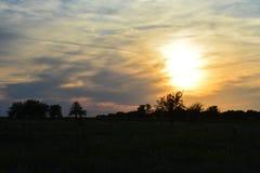 Zonsondergang op het gebied Royalty-vrije Stock Foto