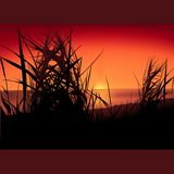 Zonsondergang op het meer Stock Afbeelding