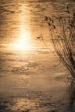 Zonsondergang op het meer met mooie waterbezinningen royalty-vrije stock foto