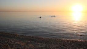 Zonsondergang op het overzees stock footage